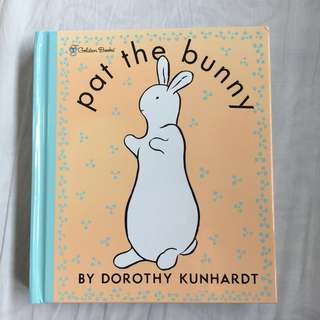 🚚 Children's book - Pat the Bunny
