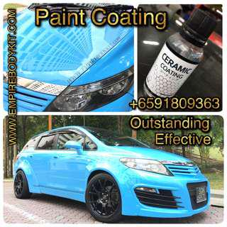 Painting Protection Coating