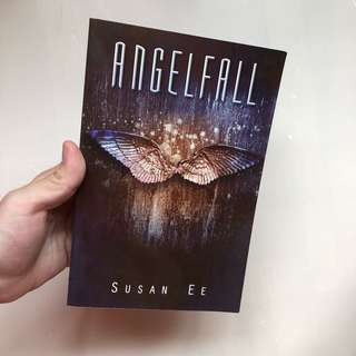Angel Fall Book