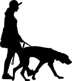 🚚 Dog walking services @ lakeside