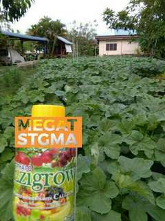 Baja Ezigrow Vitamin Kebun Anda