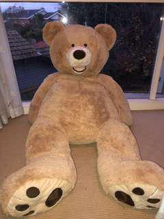 150cm teddy bear