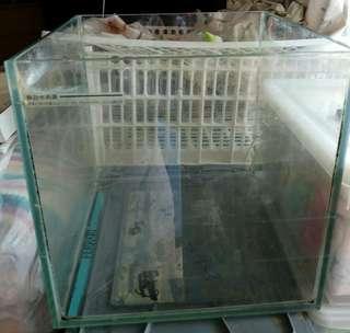 """玻璃魚缸,10""""x10""""x10"""""""