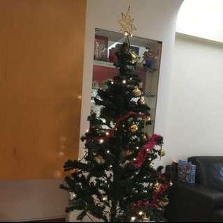 Christmas Tree (6 Ft)