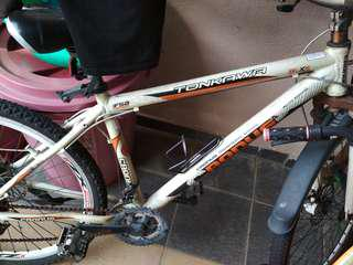 Cronus mountain bike