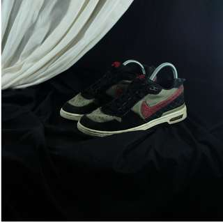 Nike SB Zoom Air x Paul Rodriguez