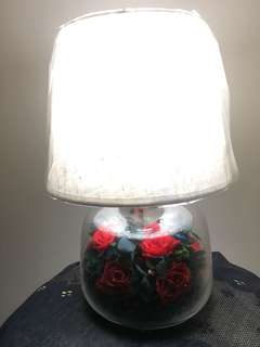 Preserved Rose lamp