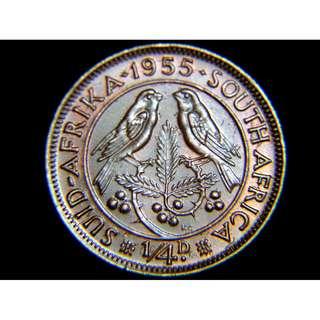 1955年英屬南非(British South Africa)雀鳥1/4便士銅幣(英女皇伊莉莎伯二世像,美品)