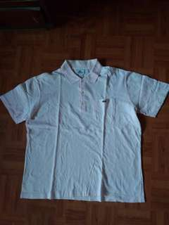 Polo shirts Lacoste original