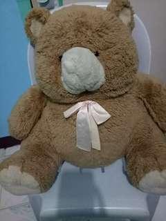 teddy bear( bear cuddler)
