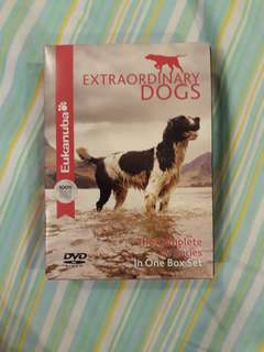 Extraordinary Dogs Episodes 1-13