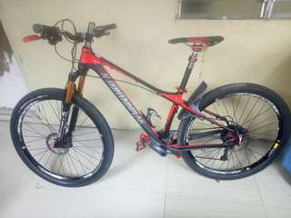 MTB mountainpeak evolution 29