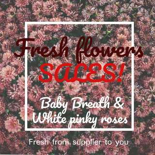 FRESH FLOWERS PROMOTION