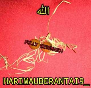 (FULLY RESERVED!) HYPER RARE! GELIGA MAHKOTA HARIMAU BELANG GHAIB 😊