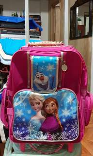 Frozen theme kids bag
