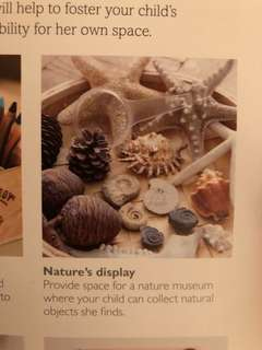 PINE CONES FOR LOOSE PARTS PLAY OR NATURE MUSEUM SET UP DESIGN CRAFT MONTESSORI WALDORF REGGIO EMILIA COMPATIBLE preschool early learning