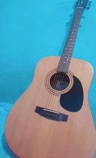 Cort acoustic listrik AD810 E