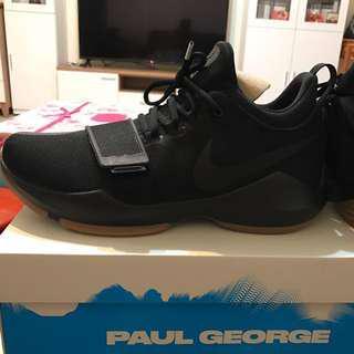 🚚 Nike PG1 EP