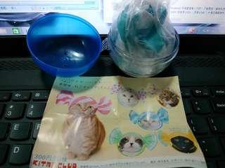 日本 貓頭套 糖果