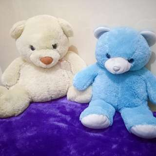 2 Pcs Tedy Bear