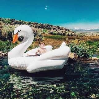 🚚 White Swan Pool Float