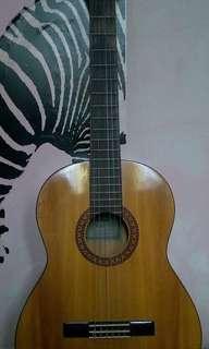 Yamaha gitar C315