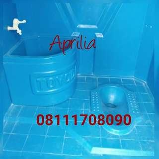 Toilet Fiberglass
