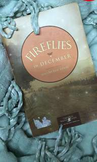 Fireflies in December Book