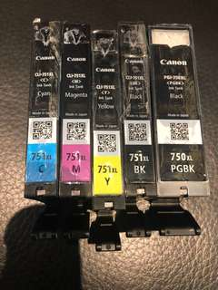 Canon PIXMA ink cartridge