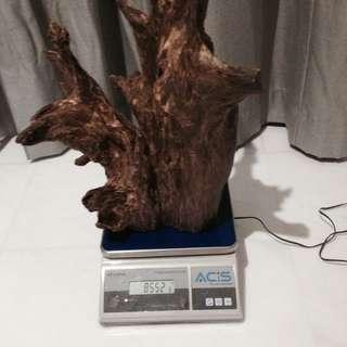 Hugh Kalimantan Agar wood