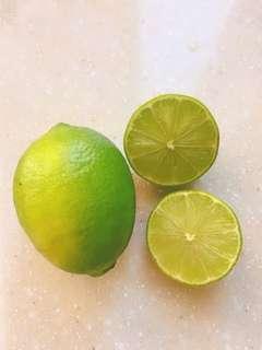 🚚 不噴藥、草生栽培的薄皮無籽檸檬