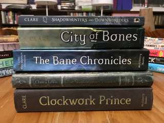 🌺The Mortal Instruments Book Bundle🌺