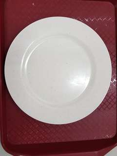 Plates and Utensils for F&B Operators