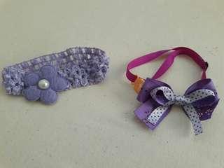 🚚 紫色寵物項圈
