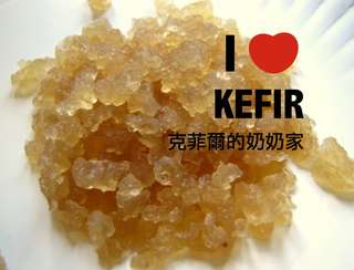 🚚 水克菲爾 Water Kefir -天然的氣泡飲料 水克 奶克可參考