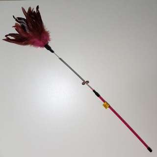 Gorgeous Feathered Springy Cat Teaser toy