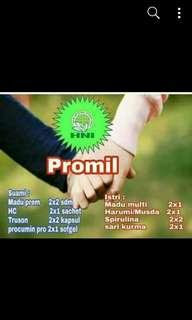 PROGRAM HAMIL