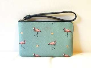 COACH Corner Zip Wristlet - Flamingo Print 火鳥圖案