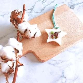 Peppermint Wax Tablet (20g) - Handmade