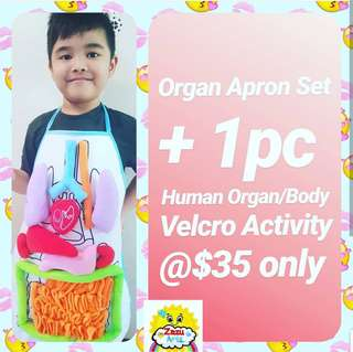 Kids Organ Apron; Human body; Human Organ