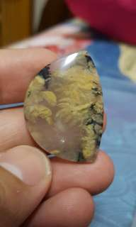 Tiger dendrit stone