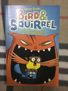 Bird & Squirrel