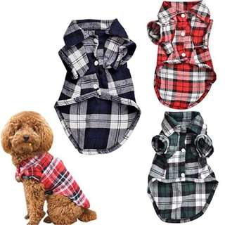 Plaid Dog Polo Shirt