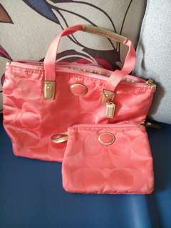 Small Hand Bag and Pouch by Coach