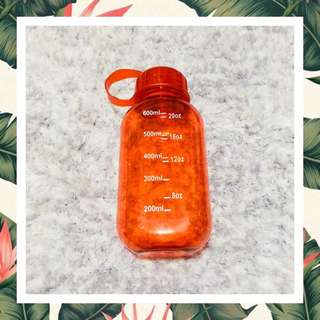 Water Bottle Tumbler