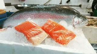 🚚 Norwegian Salmon Trout