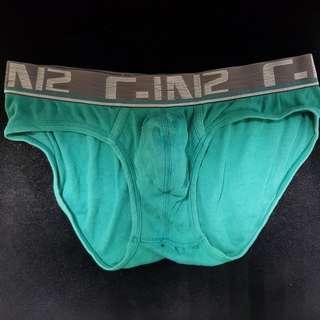 CIN2 綠色 M
