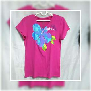 🌈 Hollister top  V neck/ T shirt