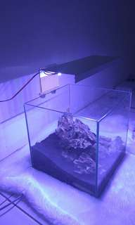 lampu led diy aquascape aquarium 12 watt