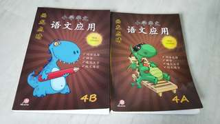 Chinese assessment 4b